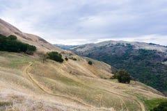 Тропа через холмы и долины заповедника открытого пространства перспективы Сьерры стоковая фотография rf