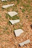 тропа Стоковое Изображение RF