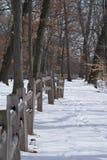 Тропа Snowy в парке на зиме Стоковая Фотография
