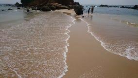 Тропики, Шри-Ланка, Цейлон, Индийский океан, пляж, волны, воссоздание, природа стоковое фото rf