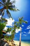 тропик залива стоковое фото rf