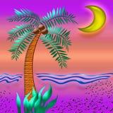 тропик захода солнца цвета Стоковое Изображение RF