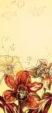 тропик предпосылки красивейший коричневатый померанцовый Стоковое Изображение RF