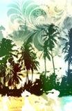 тропик рая Стоковые Фотографии RF