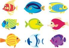 тропик рыб Стоковые Изображения
