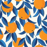 Тропическая безшовная картина с апельсинами Предпосылка повторенная плодоовощ Печать вектора яркая для ткани или обоев бесплатная иллюстрация