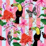 Тропическая безшовная картина с цветками, бабочками, птицами и барочн иллюстрация штока