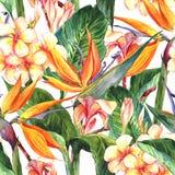 Тропическая безшовная картина с экзотическими цветками Стоковые Изображения RF