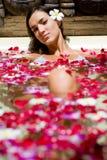Тропическая ванна Стоковые Фотографии RF