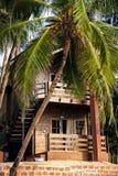Тропическая гостиница с пальмой стоковая фотография rf