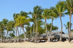 Тропическая Доминиканская Республика пляжа стоковые фотографии rf