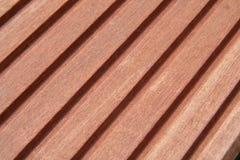 тропическая древесина Стоковое Фото