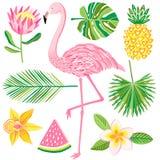 Тропическая иллюстрация вектора лета Фламинго, ананас, листья джунглей Стоковые Фотографии RF