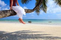 тропическая каникула Стоковые Изображения