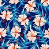 Тропическая картина флористического дизайна вышивки имбиря безшовная иллюстрация вектора