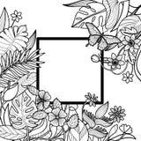Тропическая квадратная рамка Стоковая Фотография RF