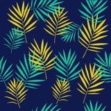 Тропическая ладонь выходит безшовная картина Стоковые Фотографии RF