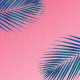 Тропическая ладонь выходит картина на предпосылку пастельного цвета Природа стоковое изображение rf
