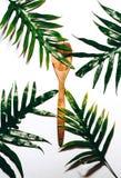Тропическая ложка стоковые фото