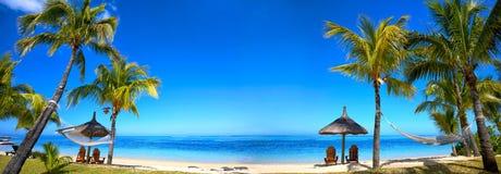Тропическая панорама пляжа Стоковые Изображения