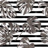 Тропическая печать картина джунглей безшовная Мотив лета вектора троповый с гаваискими цветками бесплатная иллюстрация