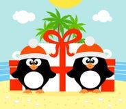 Тропическая предпосылка рождества с 2 пингвинами иллюстрация штока