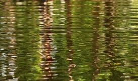 Тропическая предпосылка воды пульсации потока Стоковое Фото