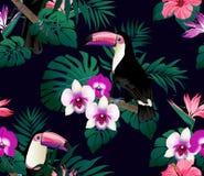 Тропическая предпосылка птиц, орхидей и листьев ладони безшовная Стоковое Изображение