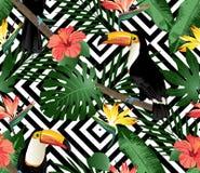 Тропическая предпосылка птиц, орхидей и листьев ладони безшовная Стоковые Фото