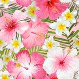 Тропическая предпосылка цветков и листьев иллюстрация вектора
