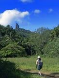 тропическая прогулка Стоковая Фотография