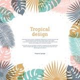 Тропическая рамка в пастельных цветах Дизайн лета тропический с экзотическими листьями ладони Экзотический ботанический шаблон с  бесплатная иллюстрация