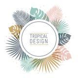 Тропическая рамка округлой формы в пастельных цветах Дизайн лета тропический с экзотическими листьями ладони Monstera, ладонь, ба бесплатная иллюстрация