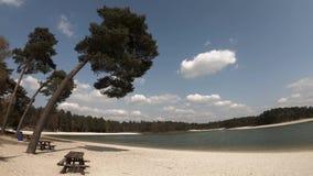 Тропическая сцена с пальмой, стендом picknick и пляжем с белым песком на спокойном озере сток-видео