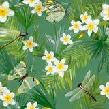 Тропическая флористическая безшовная картина с Dragonflies Предпосылка джунглей с листьями пальмы и экзотическими цветками иллюстрация вектора