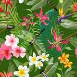 Тропическая флористическая безшовная картина с Dragonflies Предпосылка природы с листьями пальмы и экзотическими цветками иллюстрация вектора