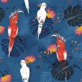 Тропическая флористическая печать Parrot птица в джунглях и цветках внутри иллюстрация вектора