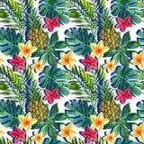 Тропические ананас, цветки и листья акварели с тенями Стоковые Изображения RF
