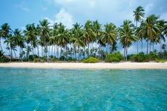Тропические ладони пляжа и кокоса в Koh Samui, Таиланде Стоковое Фото