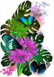 Тропические бабочки в цветах на белой предпосылке (Вектор) иллюстрация штока