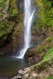 Тропические водопады в Коста-Рика Стоковые Изображения RF