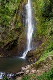 Тропические водопады в Коста-Рика Стоковое Фото