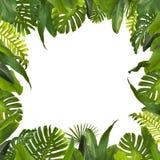 Тропические джунгли выходят предпосылка Стоковое фото RF