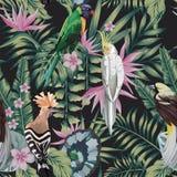 Тропические заводы птиц выходят цвету конспекта цветков черная предпосылка иллюстрация вектора