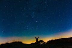 Тропические звезды стоковые фото