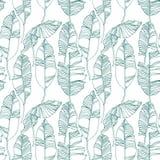 Тропические листья, картина джунглей Безшовная, детальная, ботаническая картина Предпосылка вектора Стоковые Фотографии RF