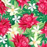 Тропические картина гибискуса флористические 7 безшовная иллюстрация вектора