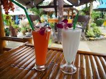 Тропические коктейли для пары на каникулах стоковая фотография rf