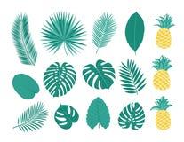 Тропические листья и ананасы Стоковые Фотографии RF