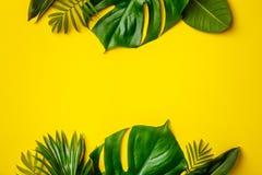 Тропические листья и цветки на желтой предпосылке стоковое изображение